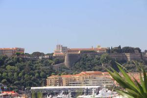 Monaco-Castle
