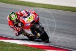 sepang gallery MotoGP 2014 (19)