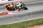 sepang gallery MotoGP 2014 (6)