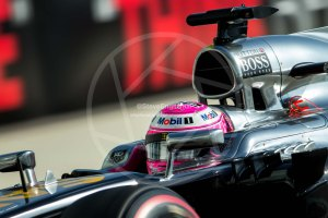 jenson button abu dhabi saturday 2014 (5)